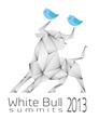 Garment Printing Partner White Bull