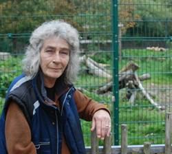 Blackpool Zoo, Amur Tiger, Lynne Gorrie