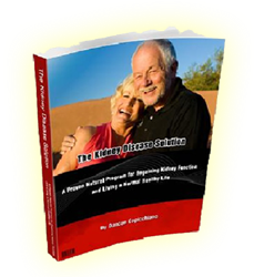 The Kidney Disease Solution eBook