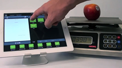 Lavu iPad POS portion control scale