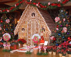 Skytop Gingerbread House