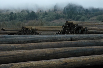 The Pacific Wood Preserving Companies Agree To Sell Four