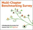 New Survey Offers Insight on Multi-chapter Organizations