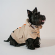 The ThunderCoat is perfect for owners who enjoy a daily walk with their dogs, regardless of the forecast.