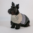 The ThunderSweater provides added warmth and style for dogs, ideal for colder months or prolonged time outdoors.