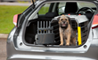 To Keep Pets Safe During Fourth of July Road Trips, Make Sure they are Properly Secured with Crash Tested Safety Devices