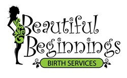 Michigan doula services