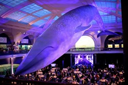 The Manhattan Hotel - An NY Hotel is a perfect choice for those in town for the American Museum of Natural History Museum Gala - a top thing to do in New York.