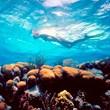 Ecuador Galapagos Trips
