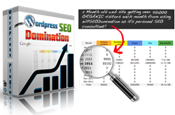 how to improve search engine ranking how wordpress seo domination