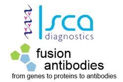Fusion Antibodies and Isca Diagnostics have partnered to develop Aspergillus-specific monoclonal antibody JF5