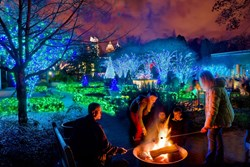 Atlanta Botanical Garden's Garden Lights, Holiday Nights