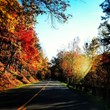 Road through the Great Smoky Mountains National Park