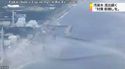 Steam rises off the surface of the Pacific Ocean near the Fukushima plant in Japan