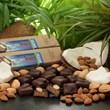 Amella Caramels Introduces Vegan Coconut Almond Caramels