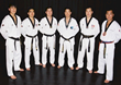 The Lee Brothers are the only 6 brothers in the world that are TaeKwonDo Grand Masters and Masters