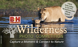 B&H Photo Video and Wilderness Trust announce the Wilderness Photo Competition