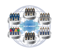 IBM Blue Insight