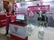Lori Mirmesdagh at the Vets Plus, Inc. booth during World Dairy Expo