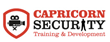 capricorn security logo