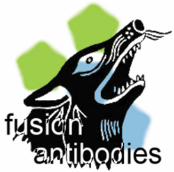 Fusion Antibodies Support Movember Foundation