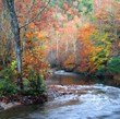 According to Cabin Fever Vacations, there is no place more peaceful and relaxing than the Smoky Mountains in the fall.