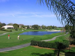 Bay Hill Golf Course View