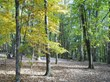 Beginning Nov. 1, 2013, campsite reservations may be made up to one year in advance at Pipestem State Park.