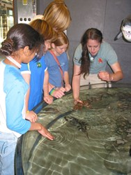 Visit Santa Barbara, Santa Barbara Museum of Natural History Ty Warner Sea Center