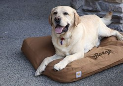 Carhartt dog bed with custom embriodery