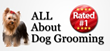 Learn to Groom Dogs with a Dog Grooming Course and Start a New Career