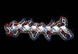 3D structure of 31 amino acid sequence p5