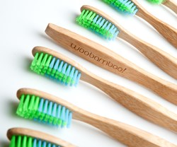 bamboo toothbrushes by woobamboo