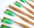 A Bamboo Toothbrush: The Perfect Eco-friendly Stocking Stuffer