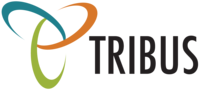 A new team member joins TRIBUS real estate technologies