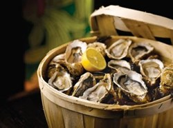 3rd Annual Oyster Week at Hyatt Regency Chesapeake Bay