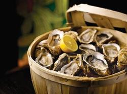 4th Annual Oyster Week at Hyatt Regency Chesapeake Bay