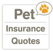 pet insurance cost