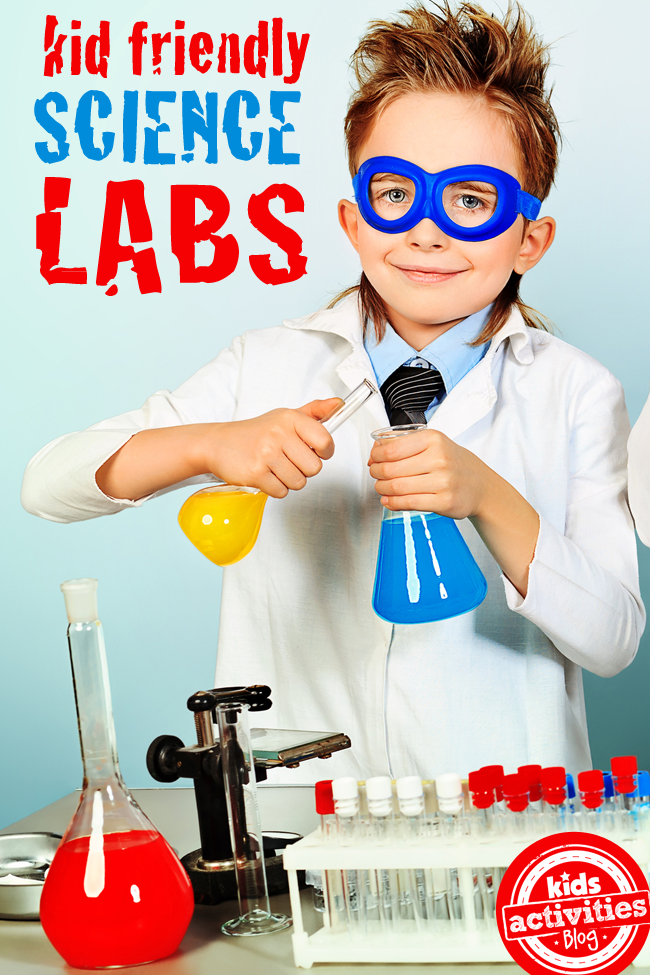 5 Best Microscopes for Kids of 2019 | Imagination Ward |Science Images And Popular Images Of The Sciences For Kids
