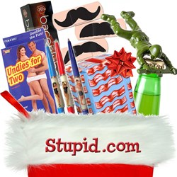Stocking Stuffers from Stupid.com