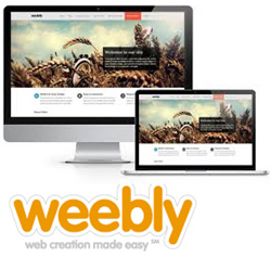 Best Examples of Websites Made with Weebly: A List of Good Looking ...