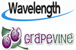Grapevine Launches Akira Wavelength Workforce Manager