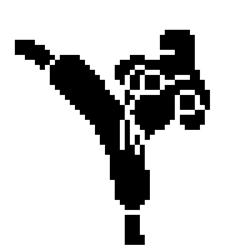 LCD Ninja Logo