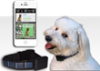 Solar-Trak Launches a Solar Powered Pet GPS Tracker for $99 on...