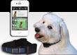 Solar-Trak Pet GPS