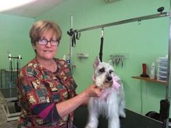 Rogeria Viana, a dog groomer for NY Breeder in White Plains NY