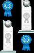 10 Best Web Design Firms Trophy