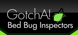 Long Island Bed Bug Exterminators