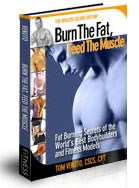fat burning diet plan how burn the fat feed the muscle