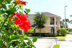 Orlando Property Rentals